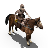 Confederate Cavalry 1
